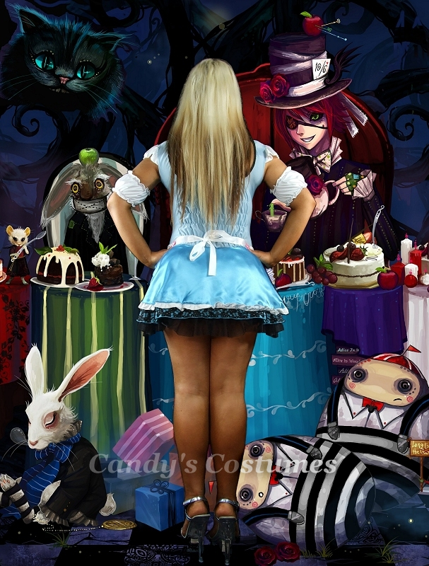Alice In Wonderland Costume Lovely Blue Satin Bustier Butterfly